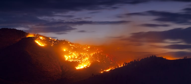 California Wildfire and Public Utility Disaster Recovery and Litigation